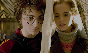 哈利波特迷的願望 我相信他們才是真愛