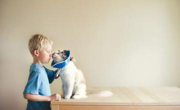 愛貓讓他們變溫柔 3小正太愛上2隻貓