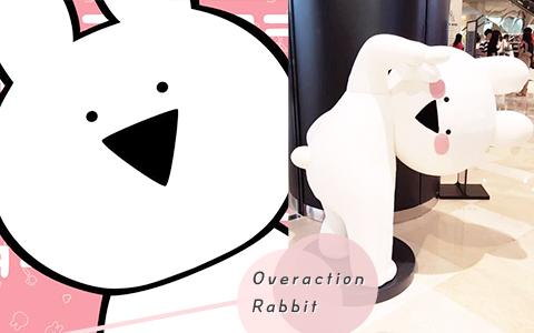 韓國最近的網紅是一隻兔子?浮誇的Overaction Rabbit讓大家都淪陷啦