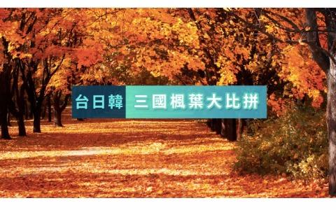 【賞楓】台日韓賞楓大比拼 內含心理測驗測出你最適合哪國楓葉!