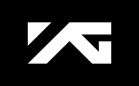 當年超騷動 讓人直呼YG「真的不看臉嗎?」的成員