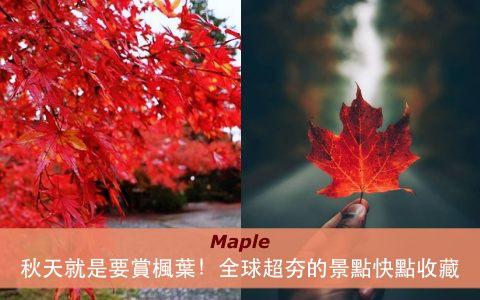 秋天就是要賞楓葉!全球超夯的景點快點收藏