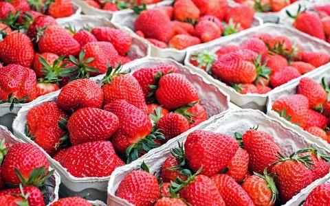 終於有充分的理由飛韓國吃草莓啦!你不可不知道吃草莓的5大好處!