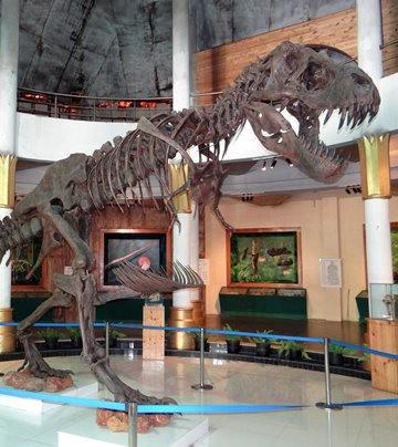 你知道嗎?《侏羅紀公園》改變台灣一件事