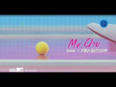 Apink -Mr.Chu