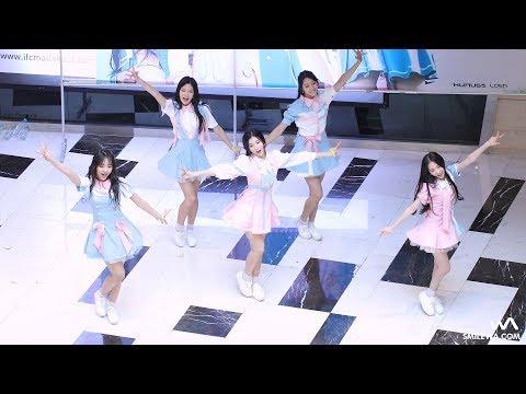 看飯拍就能感覺整團都超很瘦 但是YUKYUNG的腿是其他成員的一半... 真的是竹竿腿!!!