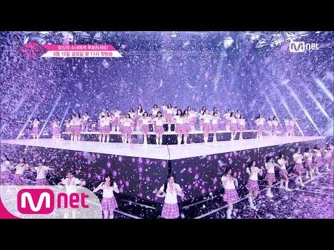 Produce 48-初舞台