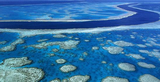 1.被稱為海上生物樂園的澳大利亞大堡礁, 因為過度開發已導致爵士珊瑚白化死亡, 如果不挽救, 未來10年內這美景將徹底消失。