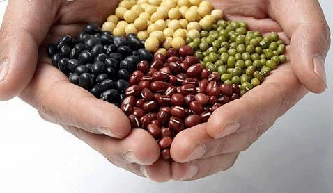 3.帶孩子們認識食物:  認識食物的來源與生長過程, 孩子們能更感受桌上食物的奧妙。