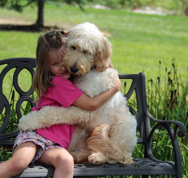 哈摟~今天小編要來介紹的是魅力大狗狗們的故事唷!