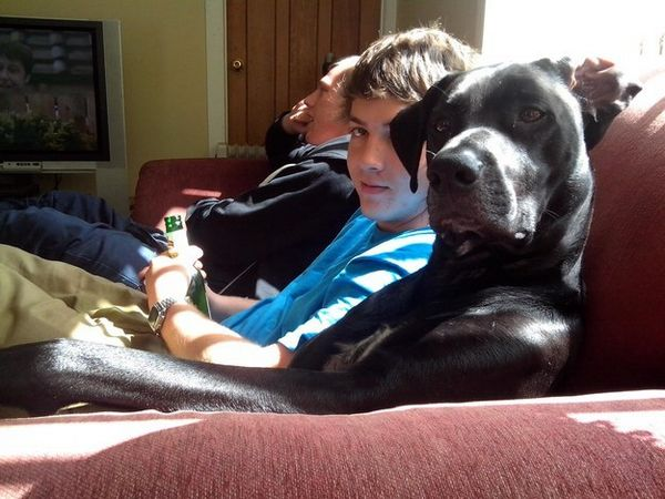偶爾有煩惱時、或是想發呆時, 還能夠一起靜靜地一起陪伴你坐在沙發上~