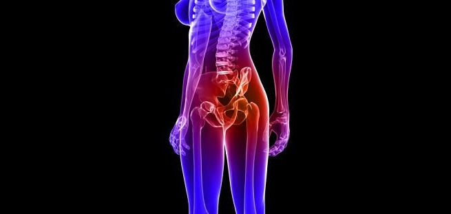 有了骨盆銜接脊椎和雙腳的骨頭,我們才能這樣自由地走動! 而且骨盆還有一個很重要的任務, 它能保護我們人體的內臟,可是很重要的存在唷!
