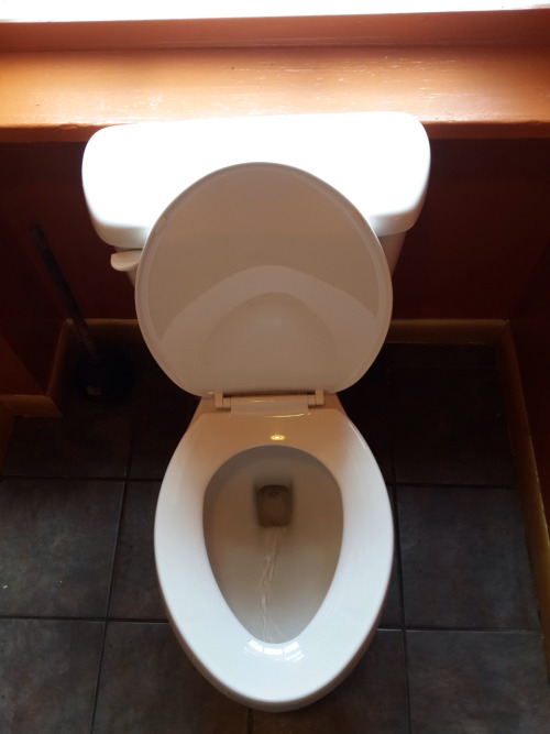 所以呢~今天小編帶來的是關於廁所的常識:) 雖說是關於廁所的常識, 但看完你會發現第一條就打破了你舊有想法。