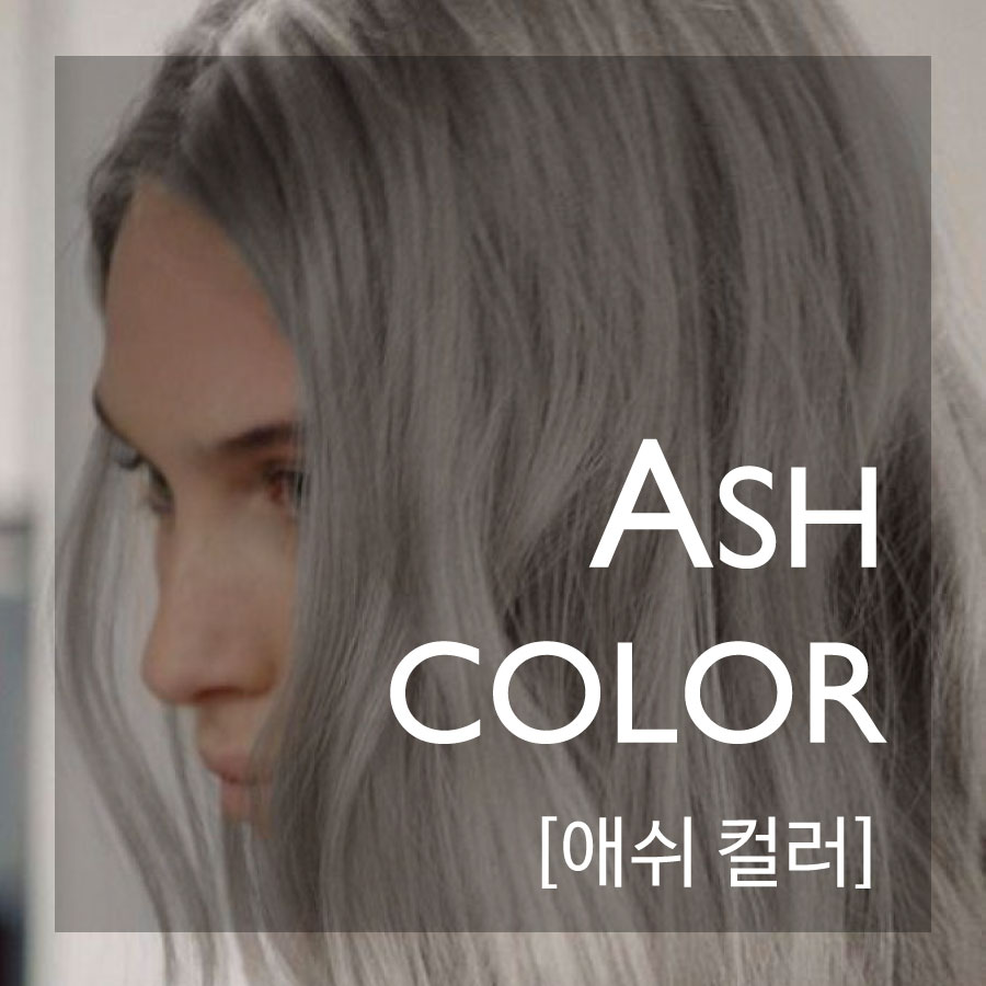 ASH COLOR—本季最流行的髮色!  簡單來說的話,就是淡淡灰色光澤感的意思摟! 利用天生的髮色加入灰色所混合出來的顏色!是種帶有神秘感的顏色唷~