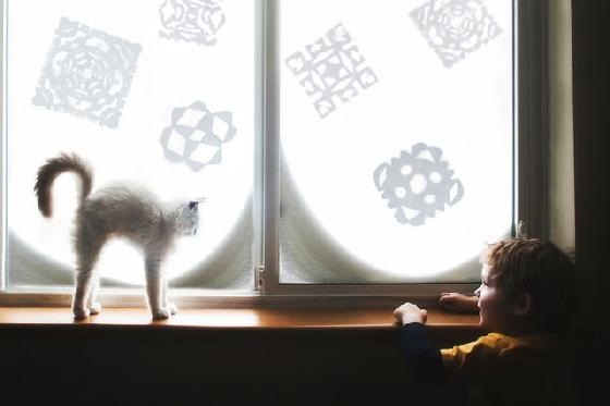 一起看向窗外的美好風景,因為有貓咪的陪伴讓幸福加分。