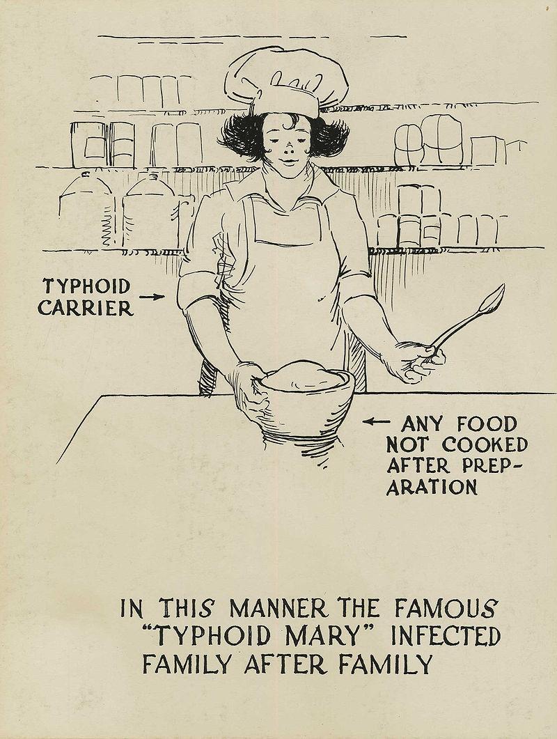 但是...瑪莉為了賺錢,因此換了個名字,在曼哈頓的某間醫院裡,又開始了廚師的工作。果然結果又是導致那個醫院裡,有25名的職員感染傷寒,且有2人病亡。