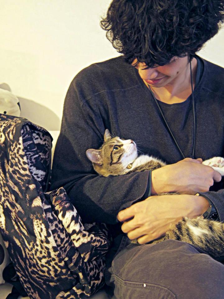 他也是愛貓人士