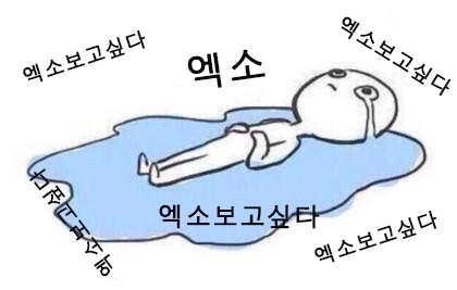 看完是否被淚海模糊了雙眼?? (字幕翻譯:好想EXO、好想EXO、好想EXO....)