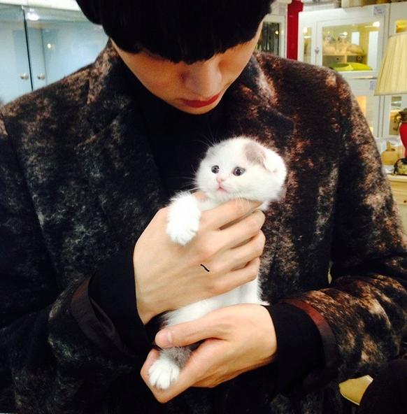 平常的興趣還有照顧他的小喵咪 (下輩子讓我投胎當他手中的小貓吧~)