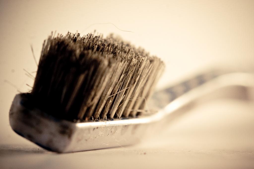 #1 放在浴室裡的牙刷,被「大便」污染的可能性很高?