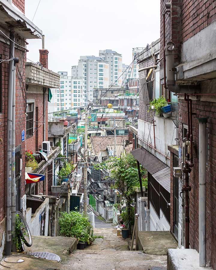 從路的上方看下去,整個呈現灰暗狀,就連住在這裡的居民都說還是會迷路⋯難怪這裡連做壞事都不行啊XDD