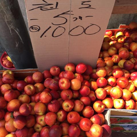 油桃5個1000韓幣