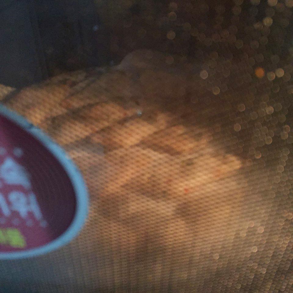 切好的魚糕在微波爐加熱5分鐘以上,直至魚糕變得脆脆的。