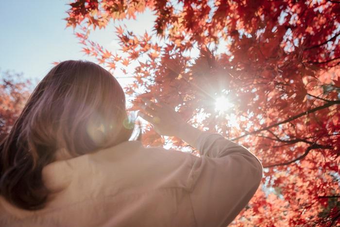 可是你知道嗎?對我們身體如此之好的維生素D,聽說只需要我們經常曬太陽就可以獲取到。但是,事實真是如此嗎?