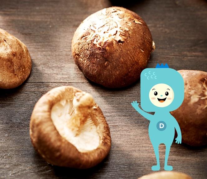 香菇、酵母等中含有大量的維生素 D₂麥角固醇,成為良好的前維生素D的供給源。