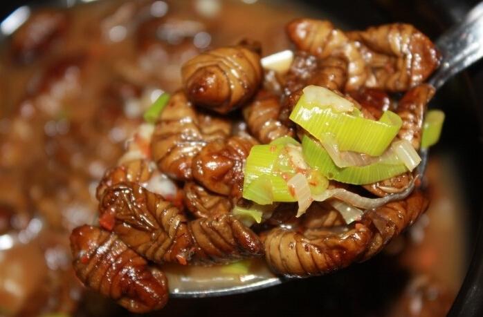 #2 煮蠶蛹 : 韓國的街邊小吃代表之一,通常會放在紙杯裡賣,雖然很多人看了會不敢吃,但吃過一口就絕對會愛上,越嚼越香,很有嚼勁,還帶著辣辣的味道。(雖然小編每次經過光聞味道就在乾嘔~)