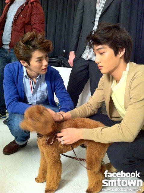 開開和他的寵物狗萌古(몽구),是一支貴賓犬。