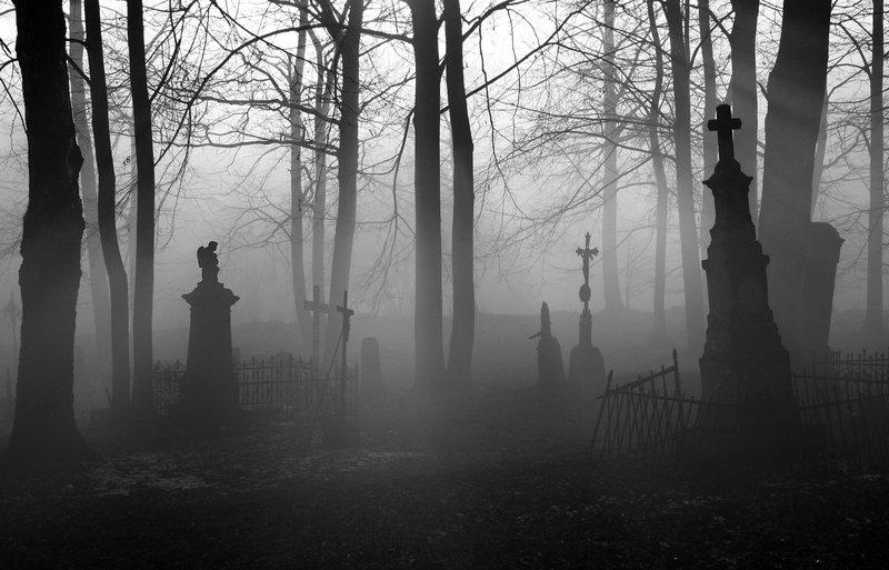 霧氣縈繞的這片墓地你會選擇哪個出口? (選好才能往下一關) 1. 從右邊走 2. 從左邊走 3. 直往前走