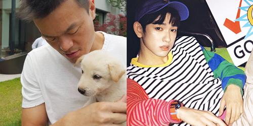 # 軫永 JYP(朴軫永) / GOT7 Junior(朴珍榮)
