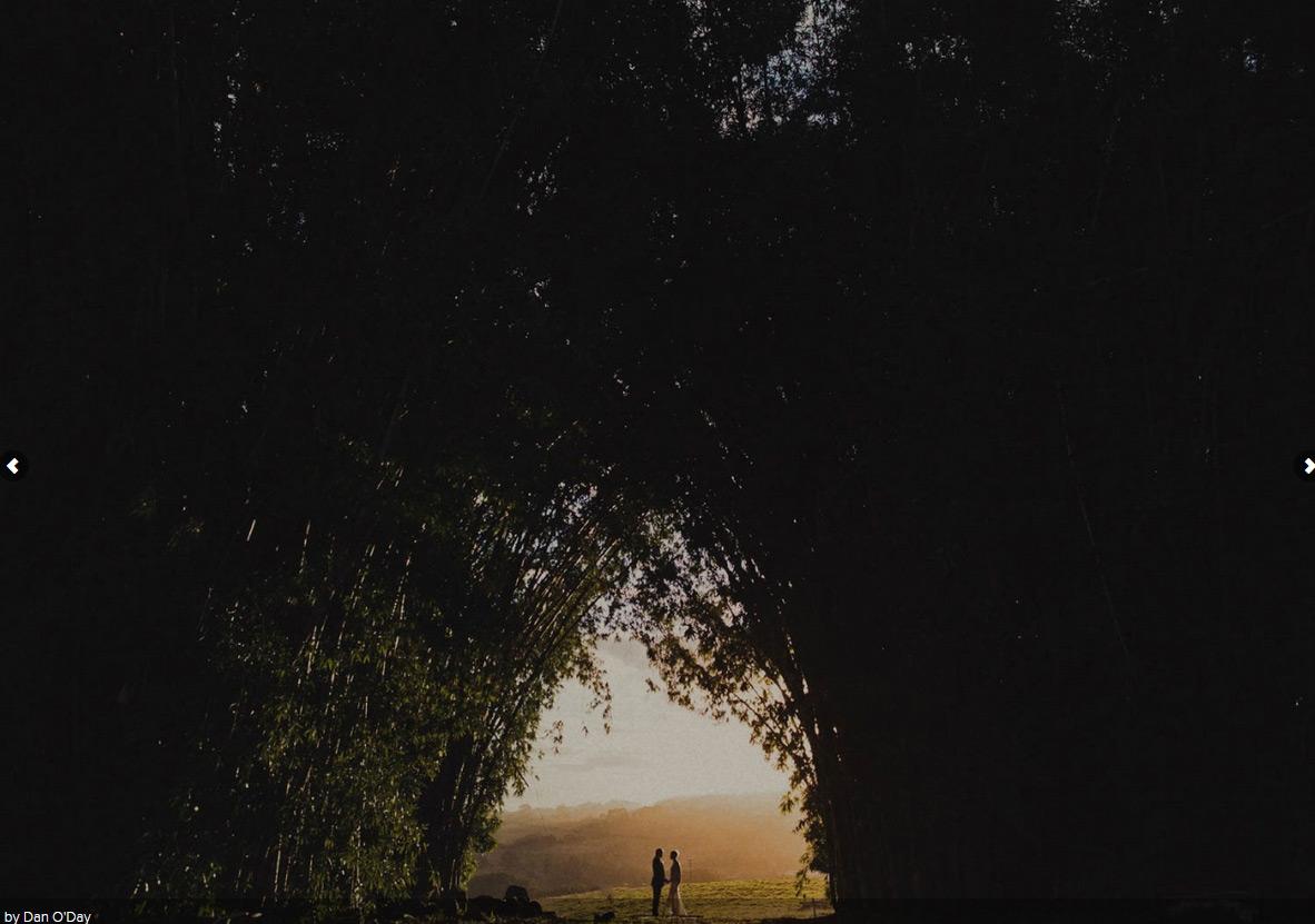 11. 拜倫灣·澳洲 by Dan O'Day 歲月靜好,親愛的先生,請說出你的誓言。