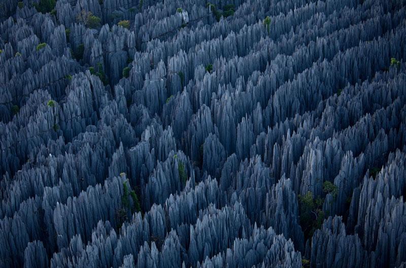 ==》終於到了..這就是今天要跟大家介紹的「貝馬拉哈國家公園」。 是馬達加斯加的國家公園,位於該國中西部梅拉基區,距離首都塔那那利佛約300公里,佔地723平方公里,成立於1997年8月1日...