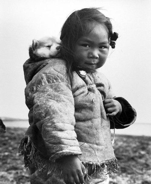 1949年, 背著小雪橇犬的因紐特人小孩