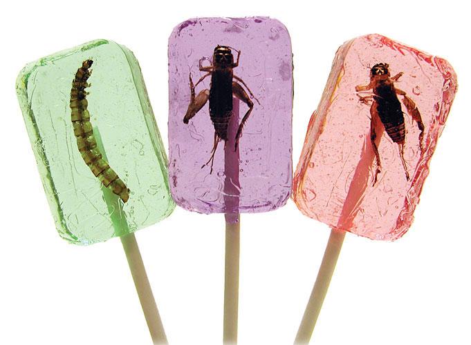 像是今天要介紹的第1款「昆蟲棒棒糖」 雖然說昆蟲有滿滿的蛋白質但… 這如果在台灣上市一定會被誤會成黑心食品