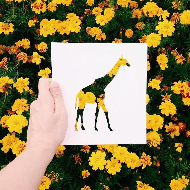藝術家Nikolai Tolsty利用剪紙藝術裁剪出動物圖形,再配以大自然五彩斑斕的鮮花、植物為背景,創作出大自然動物剪影,可謂妙趣橫生又頗具韻味。