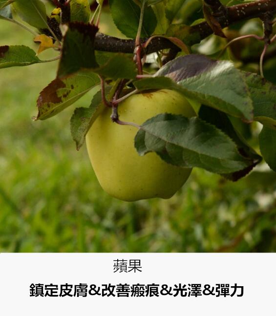 皮膚長期攝取蘋果中所含的抗衰老成分多酚,可以讓你永保童顏皮膚。堅持使用的話還可以淡化痘痕,改善斑痕,讓皮膚變得越來越細膩白皙。