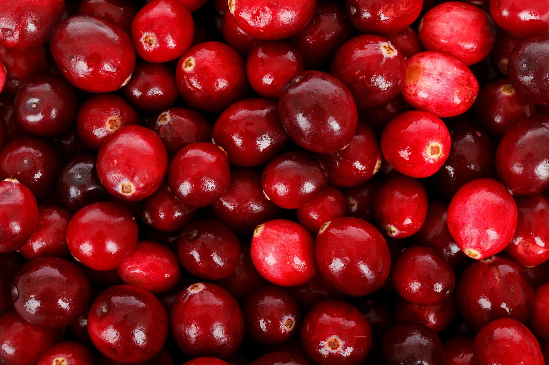 將將將將~~~~♫ 沒錯~~~~就是蔓越莓 「北美紅寶石」可不是叫假的 它富含多種營養素、能保護心血管