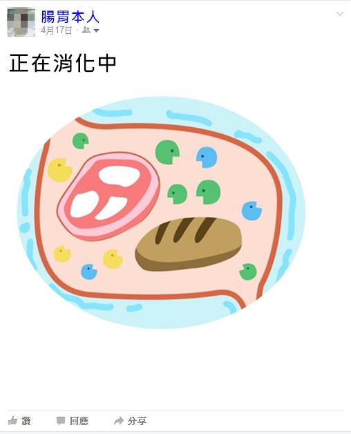所以飯後肚子咕嚕叫不用太擔心 只是腸胃想告訴大家它的最新動態