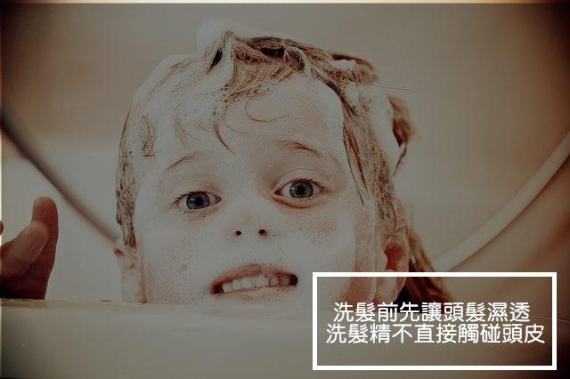 #2.不讓洗髮精直接觸碰頭皮 許多人洗髮時常將洗髮精倒在頭上 再開水搓洗 但這樣的小動作卻讓沒有水和泡沫潤滑的毛鱗直接受損 而且高濃度的洗髮精也易刺激毛囊 造成掉髮 先將洗髮精在手上搓揉至起泡 再塗浸濕的頭髮清洗才能真正保護頭皮
