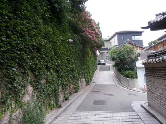 找到了!就是這面牆! 這面由爬牆虎包圍的牆就是《需要浪漫2》中,悅梅丟掉kiss的那面牆XDD~