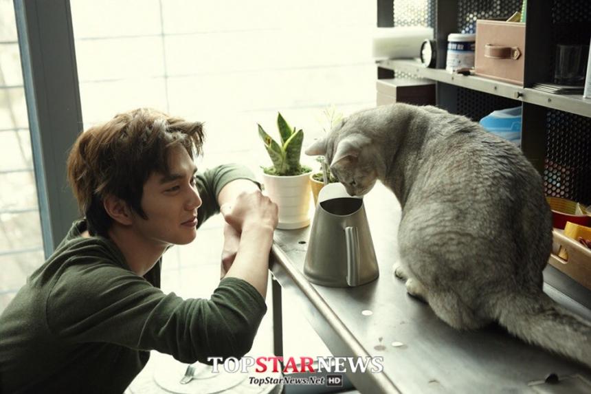 最近在韓國播映的網路劇상상고양이(暫譯:想像貓),是鮮少以貓咪為題材的偶像劇。