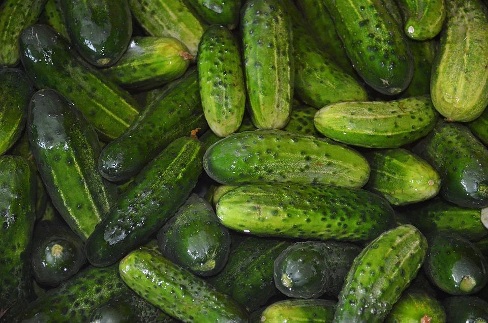 4.黃瓜 多吃一些黃瓜可以控油?NO!黃瓜含有脂溶素,能夠分解食物中的油脂,但肌膚出油的主要原因是皮脂腺活躍,所以單靠多吃黃瓜是很難有控油的。