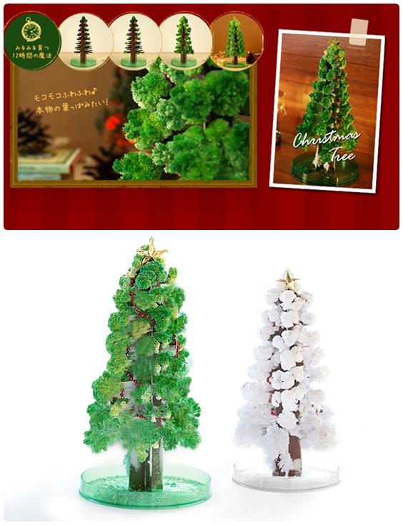 沒有大聖誕樹擺客廳,自己種一棵吧!24小時間就能長大喔…