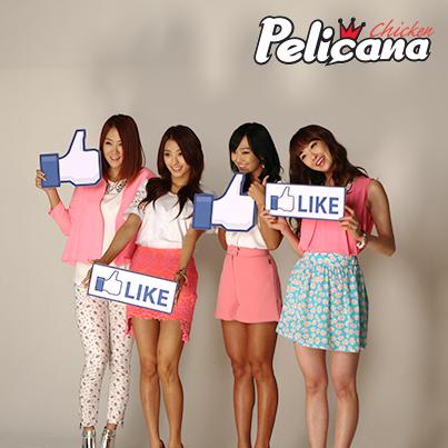 1. Sistar 代言品牌:Pelicana