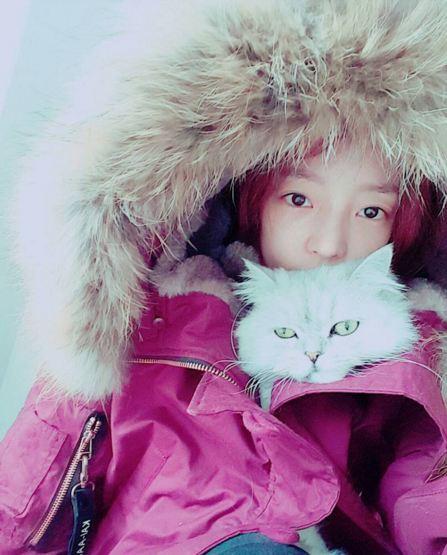 臉蛋即將消失的具荷拉:-D 和寵物貓同穿一件衣服...貓貓很暖和,這樣也可以取暖哦XD~