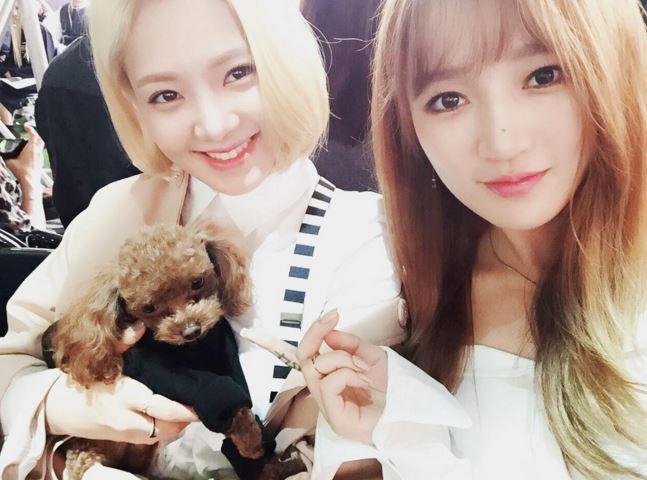 以上五位是韓國網友認為anti飯多過於粉絲的女偶像,下面幾位則是其他網友補充,雖然粉絲很多,但也很常收到惡帖的女偶像…
