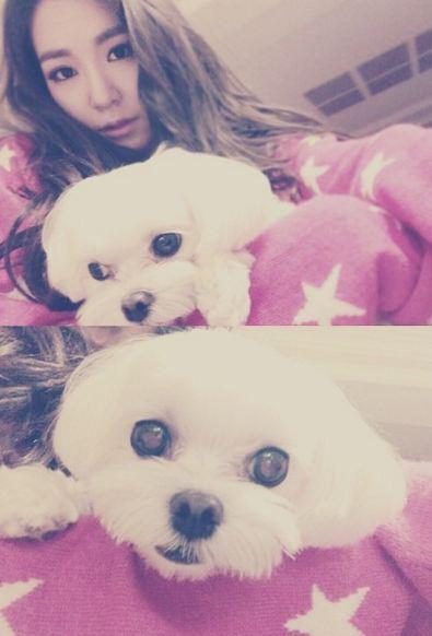 是的!就是帕妮和她的超可愛寶貝「prince」啦! 雖然是帕妮的狗狗 但在太妍IG上出沒的頻率也是超級高啦!